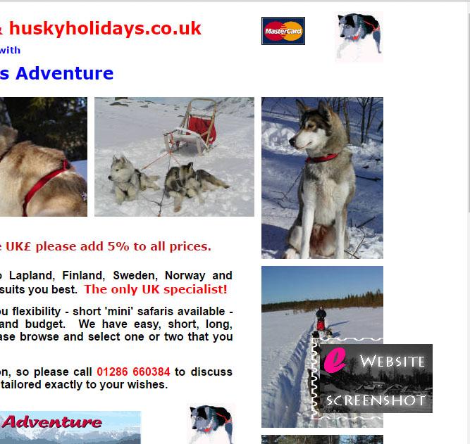Husky Holidays