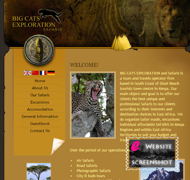 Big Cat Exploration Safaris