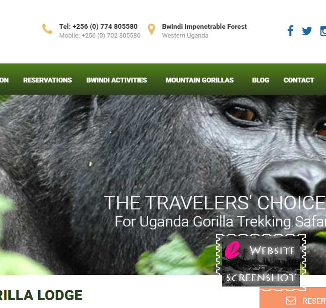 Mountain Gorilla Lodge