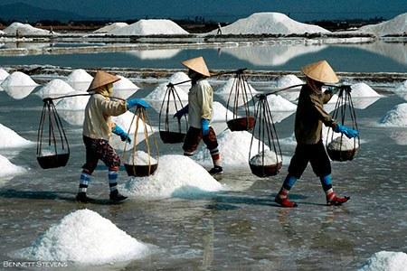 Bennett Stevens_ Vietnam Salt Harvest