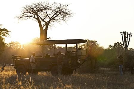 Game Drive Malawi
