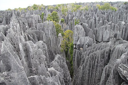 Tsingy de Bemaraha Strict Nature Reserve