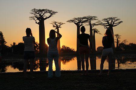 Baobab Adventure