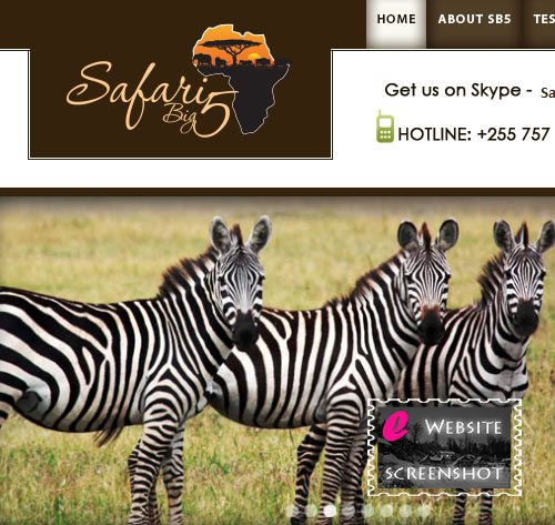 Safari Big 5