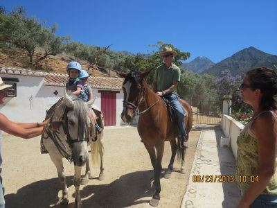 Horse riding for adults and children