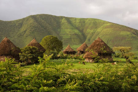 This all are one of our traditional and typical TUKULL or GOJO(farmer's) houses near to Lalibela.