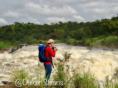 The Insights of the Murchison Falls (kabalega Falls) at the Top in Murchison Falls National Park.