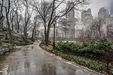 New York Park