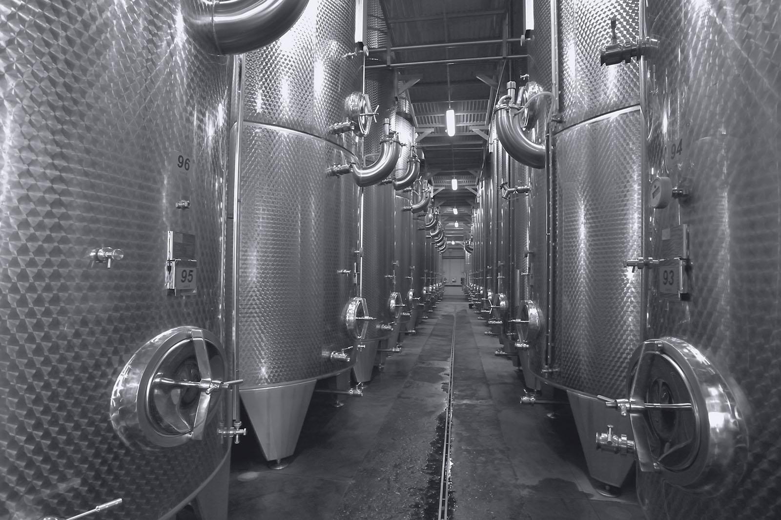 Wine Barrels, Focsani, Romania