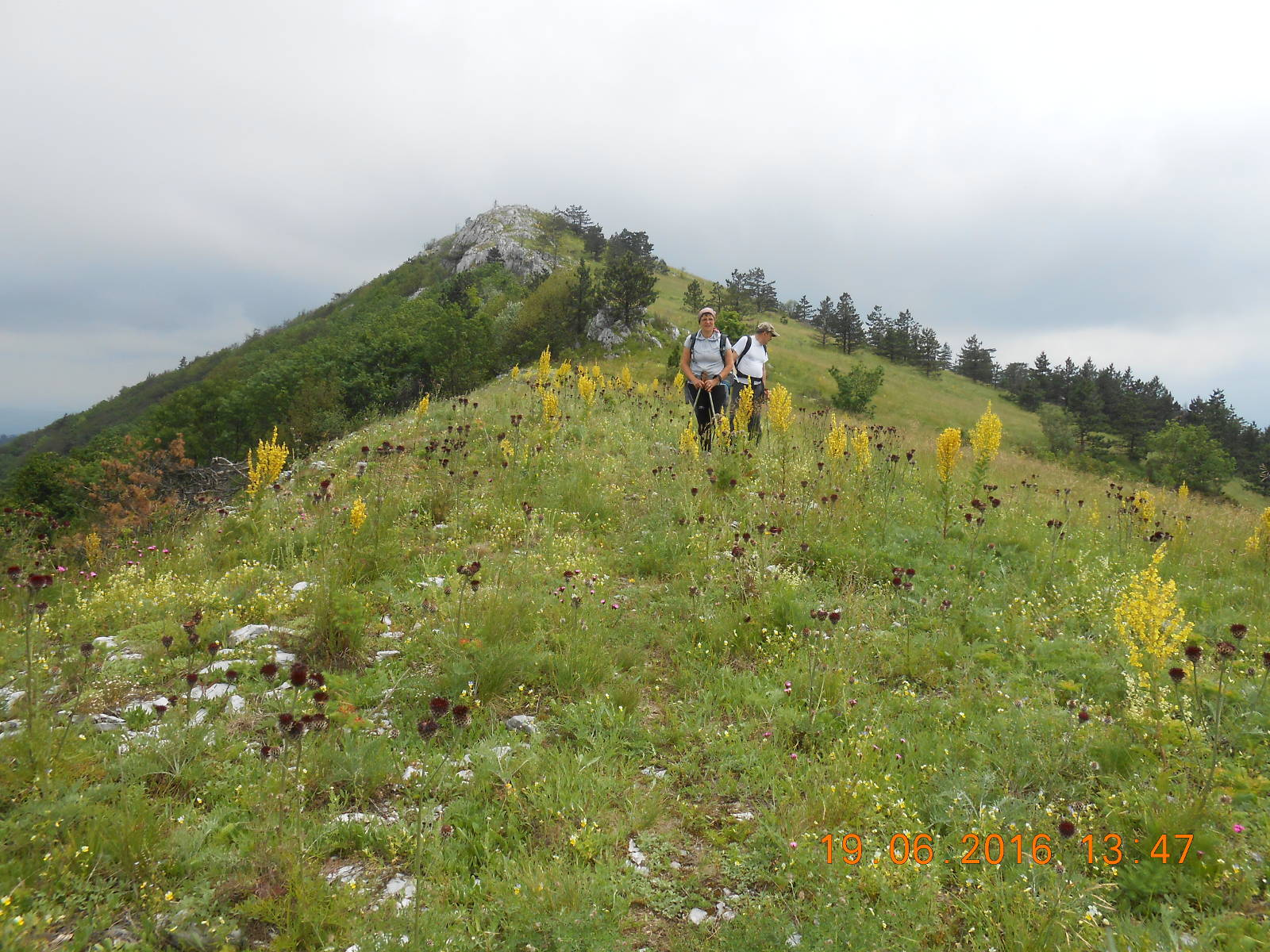 Domogled National Park