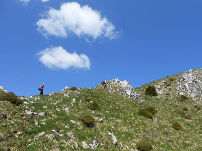 Frumoasa Ridge