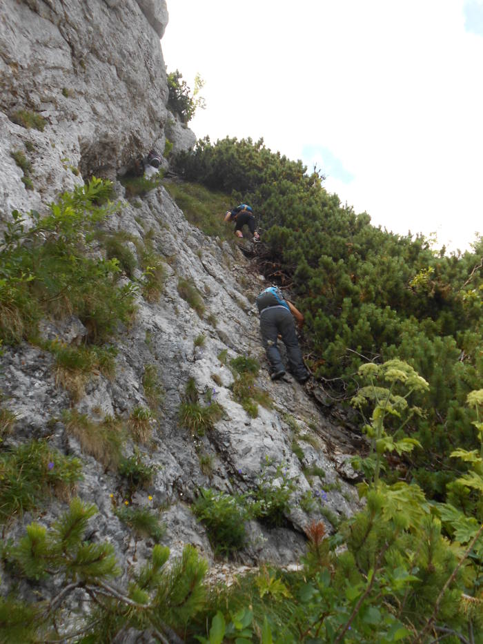 Climbing to Vioreanu